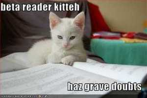 Beta Reader